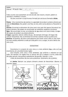 CADEIA ALIMENTAR SERES VIVOS Bullet Journal, Science, Photosynthesis Activities, Classifying Animals, Science Notebooks, Reading, Classroom, Platform, Fortaleza