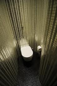 dream of a toilet