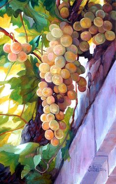 Grapes, Too Gorgeous To Eat ~ Mary Alice Saltiel. Watercolor Fruit, Fruit Painting, Watercolor Flowers, Painting & Drawing, Watercolor Paintings, Watercolors, In Vino Veritas, Fruit Art, Art Oil