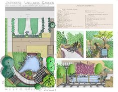 Growing with Care: A Japanese Wellness Garden Plan