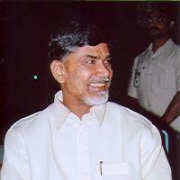 N. Chandrababu Naidu Telugu Desam Party, Politicians, Chef Jackets, Indian