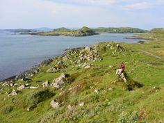 See wild #Scotland! #travel