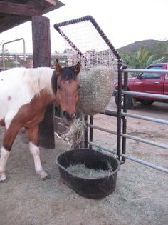 What a great idea!  Looks like net from a soccer goal.  Maria Siebrand's hay feeder - Paddock Paradise