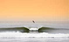 trestles beach surfing - Google Search