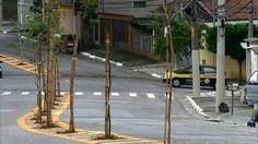 G1 - Prefeitura de SP planta árvores no asfalto para 'escapar' de calçada e fios - notícias em São Paulo