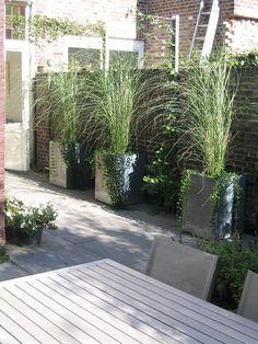tuinaanleg Maastricht Heerlen Kerkrade Sittard Zuid limburg