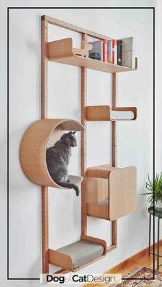 Cat Climber, Cat Wall Shelves, Diy Cat Tree, Pet Hotel, Cat Playground, Cat Condo, Cat Room, Pet Furniture, Cat Friendly Home