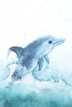 dolphin watercolor original not printed by ManamiTakamatsu on Etsy