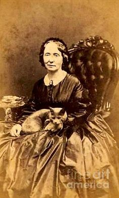 American Civil War era carte de visite photograph of a lady with her cat seated in a Rococo Revival slipper chair ca Vintage Pictures, Old Pictures, Old Photos, Old Cats, Cats And Kittens, Old Portraits, Graffiti, Cat People, Black White