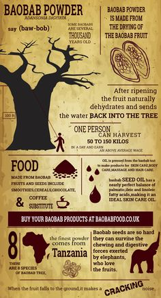 Pictures This infographic is about baobab powder, Africa's superfood! The boabab tree offers a varie Baobab Benefits, Oil Benefits, Health Benefits, Baobab Powder, Baobab Oil, Growing Mushrooms, Healthy Mind, Eat Healthy, Superfoods