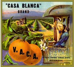 US $9.99 New in Collectibles, Advertising, Merchandise & Memorabilia Vintage Prints, Vintage Art, Orange Crate Labels, Vegetable Crates, Riverside California, Fruit Art, Printing Labels, Advertising Poster, Vintage Labels