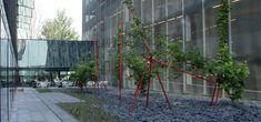 West 8 Urban Design & Landscape Architecture / projects / Inner garden University of Utrecht