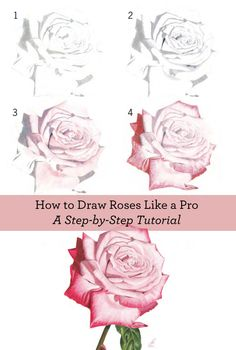 Learn about drawing flowers with this free collection of flower drawing techniques.