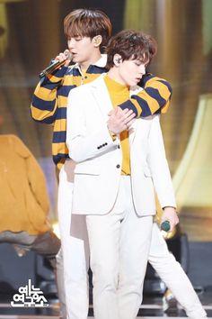 Mingyu and Vernon Mingyu Wonwoo, Seungkwan, Woozi, Seventeen Vlive, Vernon Seventeen, Adore U, Bts And Exo, Extended Play, Pledis Entertainment