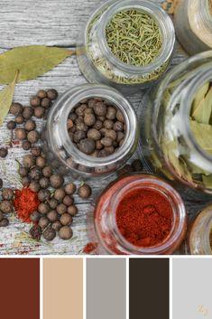 ZJ Colour Palette 13 #colourpalette #colourinspiration