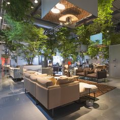 Sou Fujimoto suspends trees above Cassina's Milan display space - first appearance of Otto sofa by Piero Lissoni.