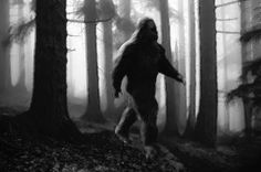 Check this out! Bigfoot Growls at Girls, and Multiple Encounters at Gravel Pit