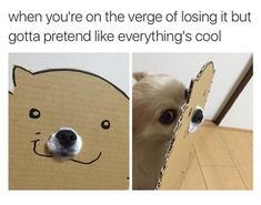 when your life becomes one big long dank meme