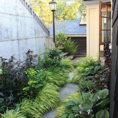// by Studio 342 Landscape Architecture Modern Landscaping, Outdoor Landscaping, Landscaping Plants, Landscape Design, Garden Design, Landscape Architecture, Contemporary Landscape, Small Gardens, Outdoor Gardens