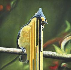 Bird rib, 2010, oil on canvas 50x50cm/ via Flickr