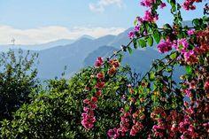 Picos mountain Asturias Spain.