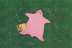 Bear Skin Picnic Blanket : Extravagant picnic rug in the form of a bear