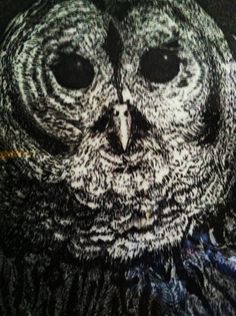 Favorite  Like this item?    Add it to your favorites to revisit it later.  Owl Etching  Owl Etching
