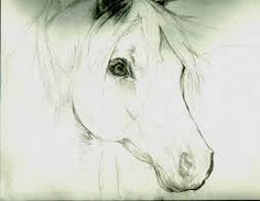 how to draw a horse head - Google Search