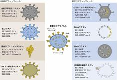 新型コロナ ワクチンの開発状況は?(忽那賢志) - 個人 - Yahoo!ニュース