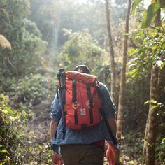 Findings Along The Way – Victoria Rivera and Soren Nielsen travel along the Kinabatangan River, Borneo