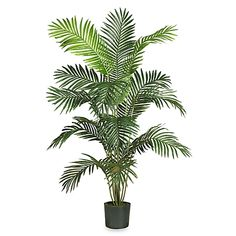 Nearly Natural Paradise Palm 5-Foot 6-Inch Silk Tree