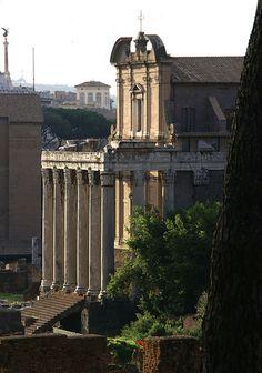 Rom Forum Romanum,Tempel des Antoninus Pius und der Faustina (Roman Forum, Temple of Antoninus Pius and Faustina)