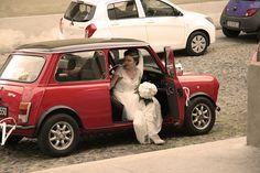 Facce da... agitazione pre matrimonio! #weddingphotography #justmarried #wedding #ilmatrimonioperfetto #vivaglisposi #matrimonio
