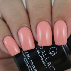 Opallac Gel Polish Babes In Bondi swatched by Olivia Jade Nails