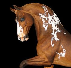 Horse Sculpture in Ceramic and Artists Resin by Deborah McDermott Sculpted Horses