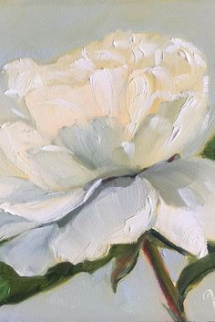 Original oil painting: Peony Study in White by KIMPETERSONART More