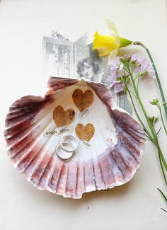 Ring dish trinket dish Scottish scallop shell jewelry dish