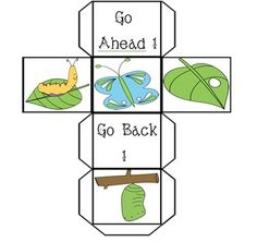 Butterfly and Frog Lifecycle Bundle  Activites, Printables, Games, Emergent Readers