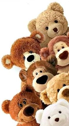 Take photo of all Izzy's bears before she outgrows them