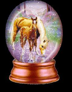 Blingee Horses   صور دائرية روووووووعة
