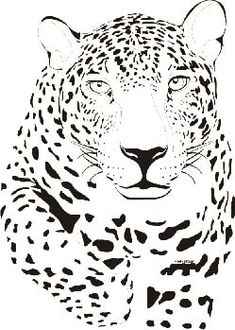 Onça Pintada Desenho feito por Maria Muller. Animal Sketches, Animal Drawings, Pyrography Patterns, Large Stencils, Geometric Drawing, Leopards, Cat Drawing, Hobbies And Crafts, Photoshop