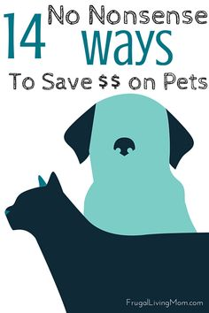 We're all looking for ways to save some money. If you currently have a pet, you probably already know the expenses they can incur and while we want to take the utmost care of our furry friends, we also don't want to break the bank in the process. Here are a few practical ways to reduce some of  your spending in pet care costs:
