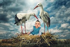 Getting ready for delivery by John Wilhelm is a photoholic on 500px
