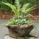 Tree Stump For Garden Art_37