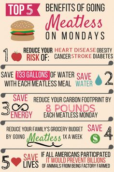 Top 5 Benefits of Going Meatless on Monday! Cheers to your health! Join the revolution #MeatlessMonday