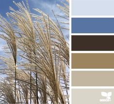 Autumn Sky - http://design-seeds.com/index.php/home/entry/autumn-sky1