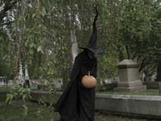 Image result for pumpkinrot witch