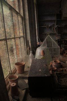 simple beauty in the potting shed...