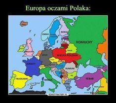 Hetalia everywhere (Hetalia wszędzie) 2 Wtf Funny, Hilarious, Funny Images, Funny Pictures, Polish Memes, Funny Mems, Stupid Memes, Man Humor, Best Memes