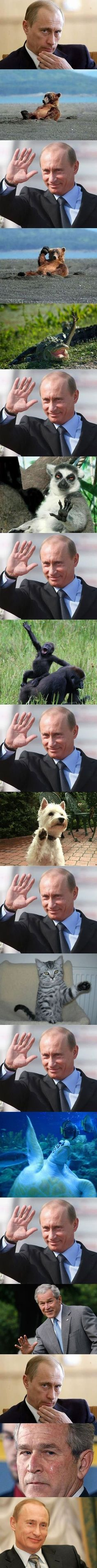 Friendly Putin this is really funny lol